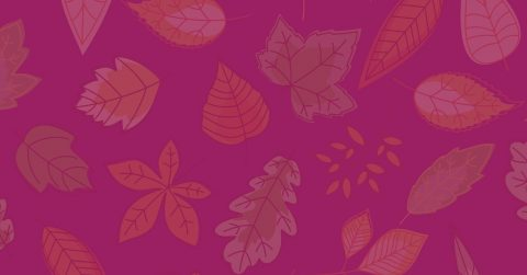 Make a Mosaic Leaf with Us!